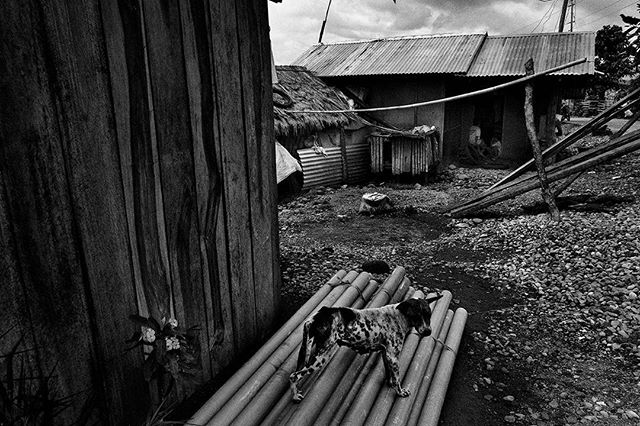 Construction materials from an aid organization await to be distributed to beneficiaries who lost their homes during the storm.  Leyte, Philippines.  The change in earth's temperature is predicted to cause stronger typhoons like Haiyan. Every year, as more people face these issues, SIGNOS illustrates the new norm, a dark sign of things to come. Climate change does not happen in isolation. The signs are clear and there's no denying what the future generations will be facing.  An outtake from forthcoming book Signos by Veejay Villafranca published by MAPA Books. @vjvillafranca  #signos #veejayvillafranca #mapabooks #everydayphilippines #yolandaph #haiyanph  #everydayclimatechange #everydayeverywhere #visayas #philippines #climatechange #climatechangeisreal #photobooks