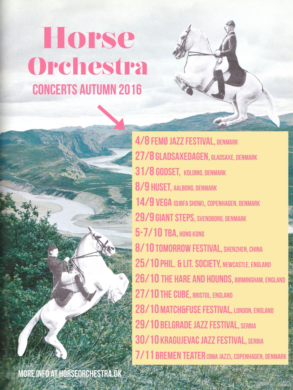 Horse Orchestra Concert Autumn 2016