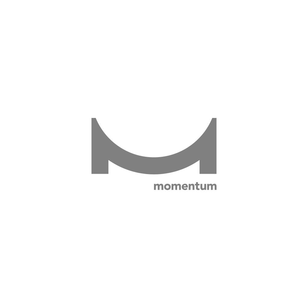 LOGO-MOMENTUM.jpg