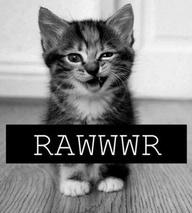 rawwr.jpg