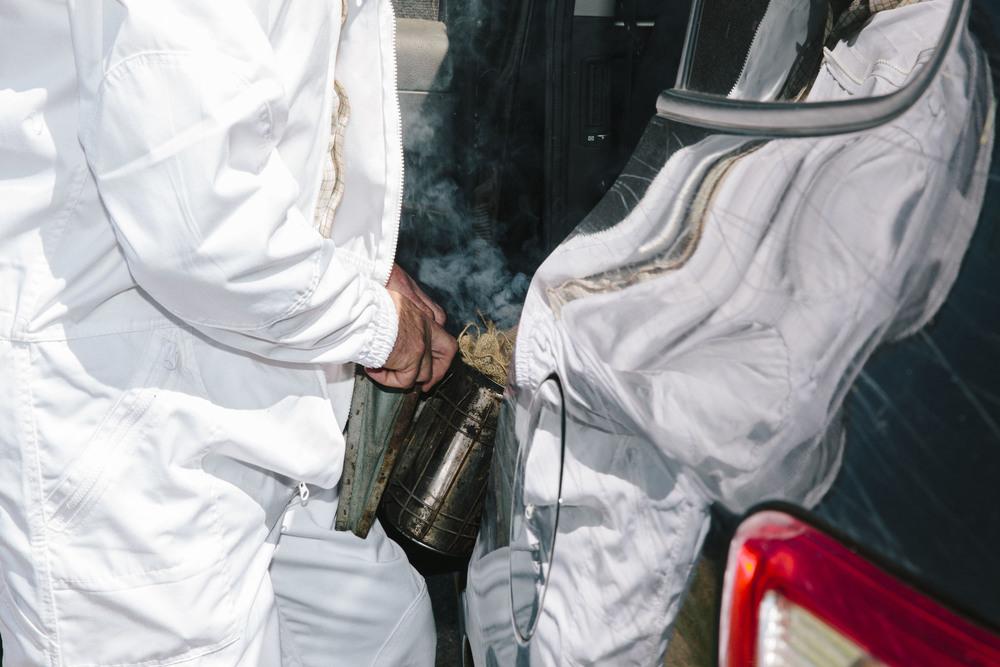 Beekeeping4.jpg
