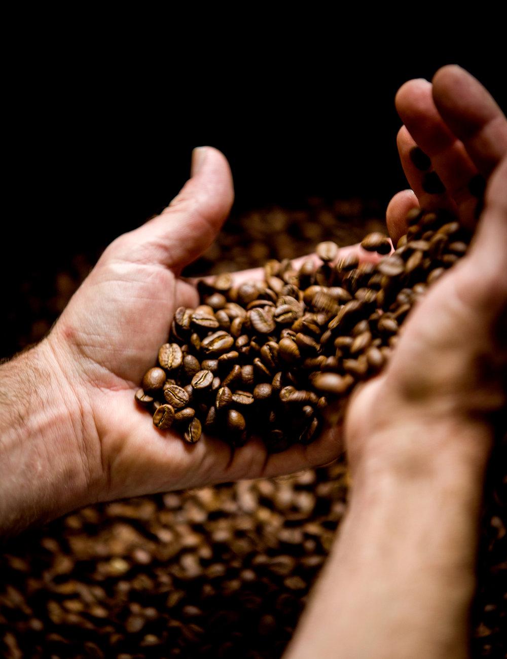 Coffee_Cara-5.jpg