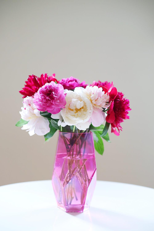 bloomia12.jpg