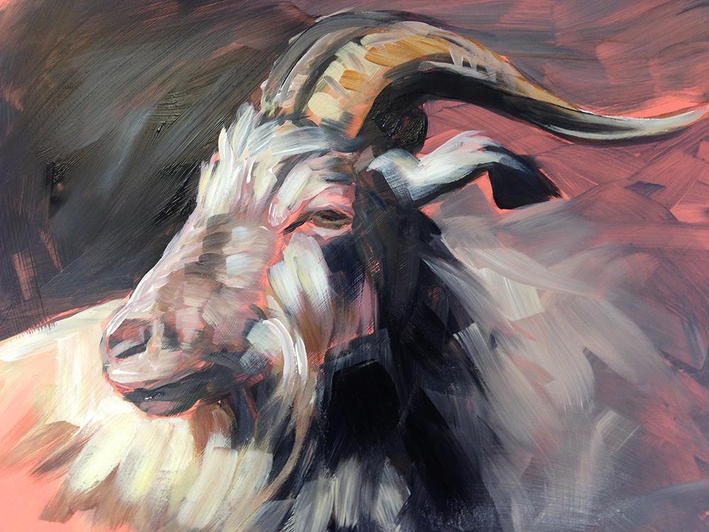 "Goat sketch on Mylar:  9"" x 12"" | Acrylic on Mylar"