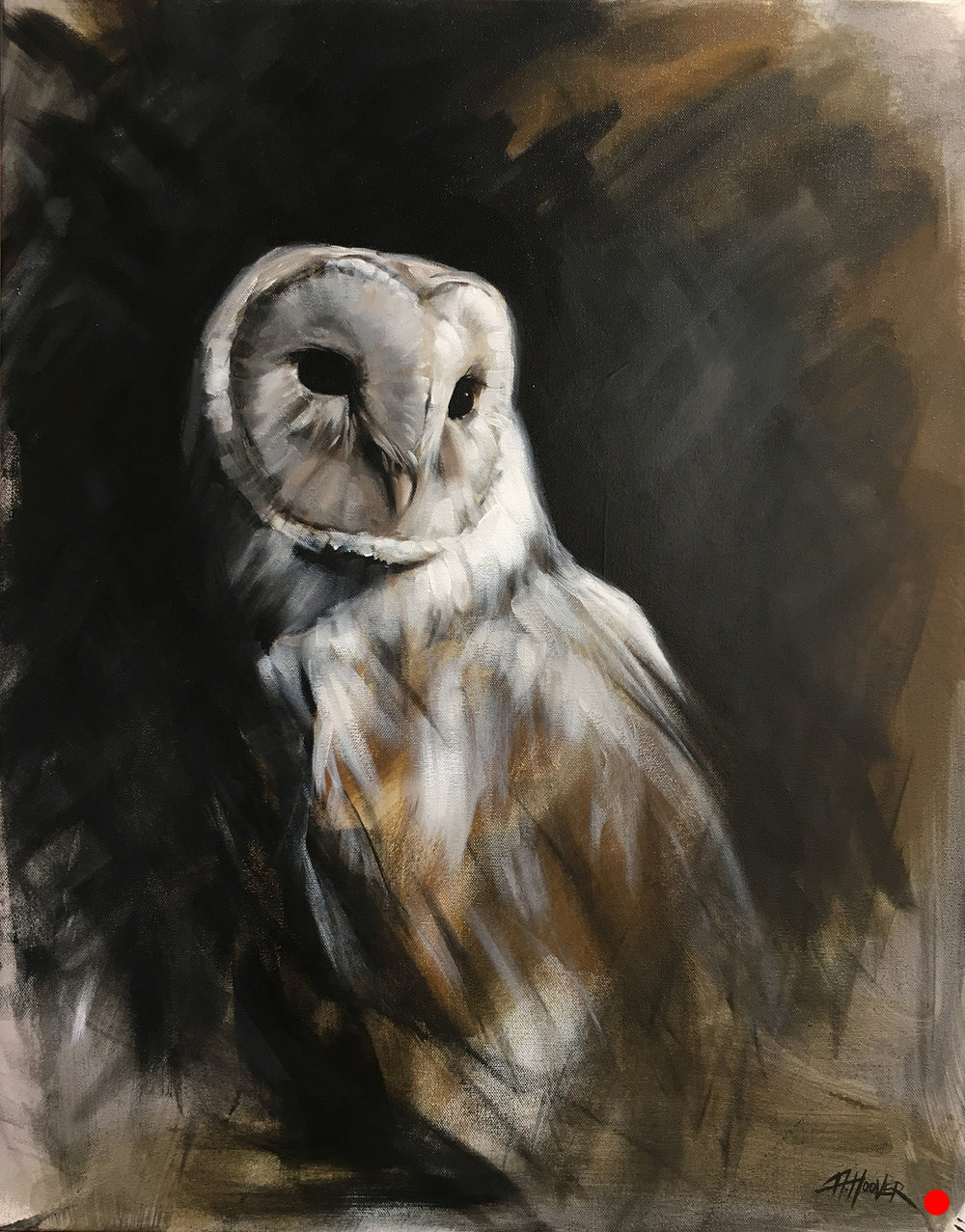 """Barn Owl"" 