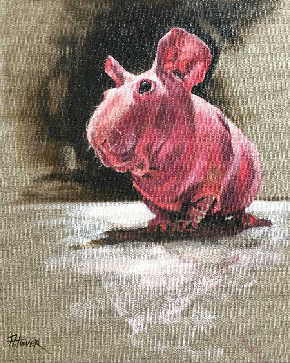 """Ludwik (Hairless Guinea Pig)"" 
