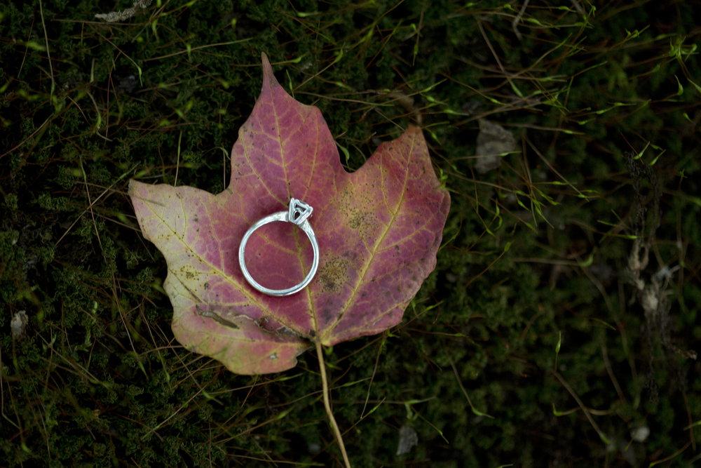 Thompson Engagement #35.jpg
