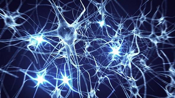 neuron/brain shit