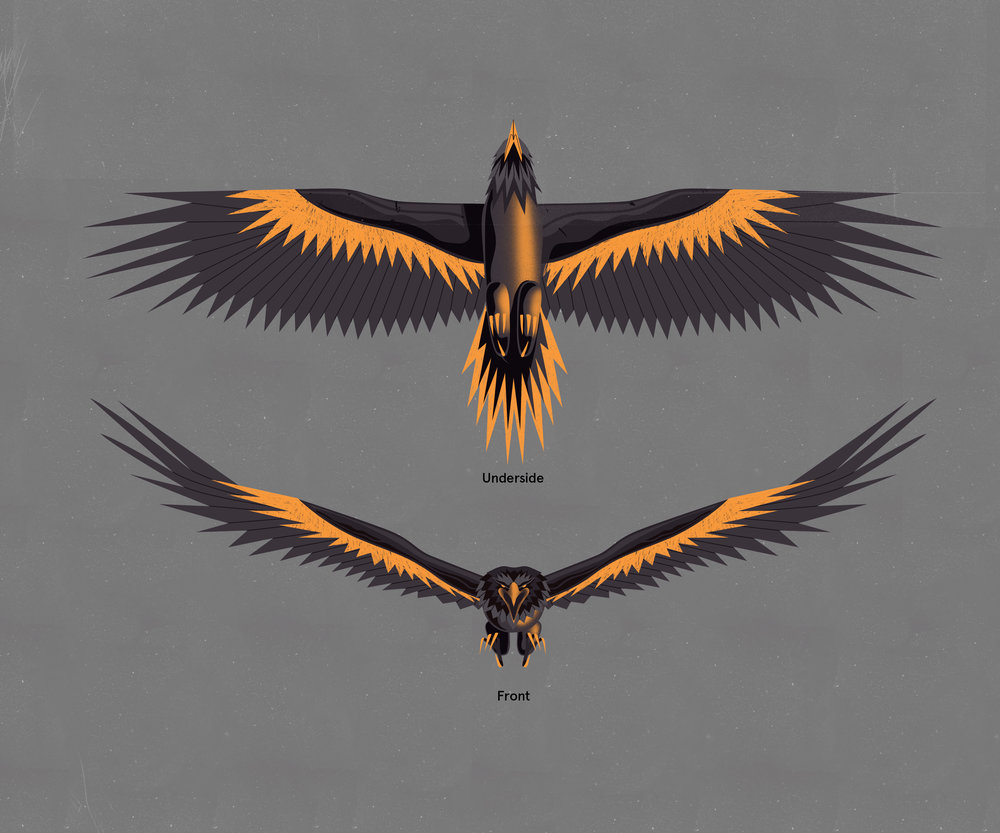 AdidasZNE3.0_EagleConcept_a02_LB.jpg