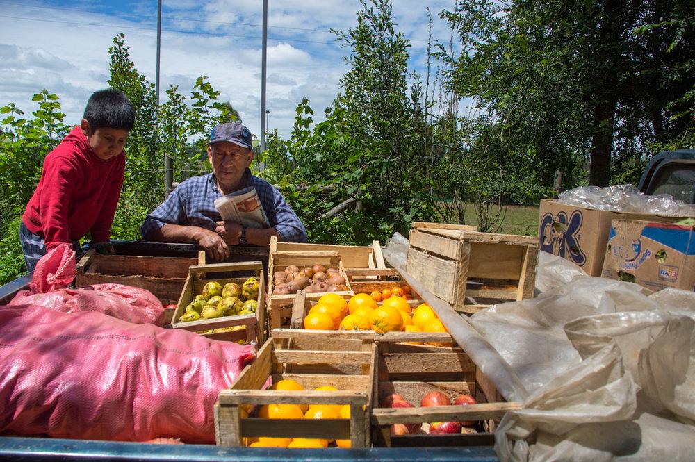 La familia produce casi toda de su comida en la granja pero usualmente no tienen suficiente como para vender al igual que otras familias que sobreviven con el dinero de lo que venden.