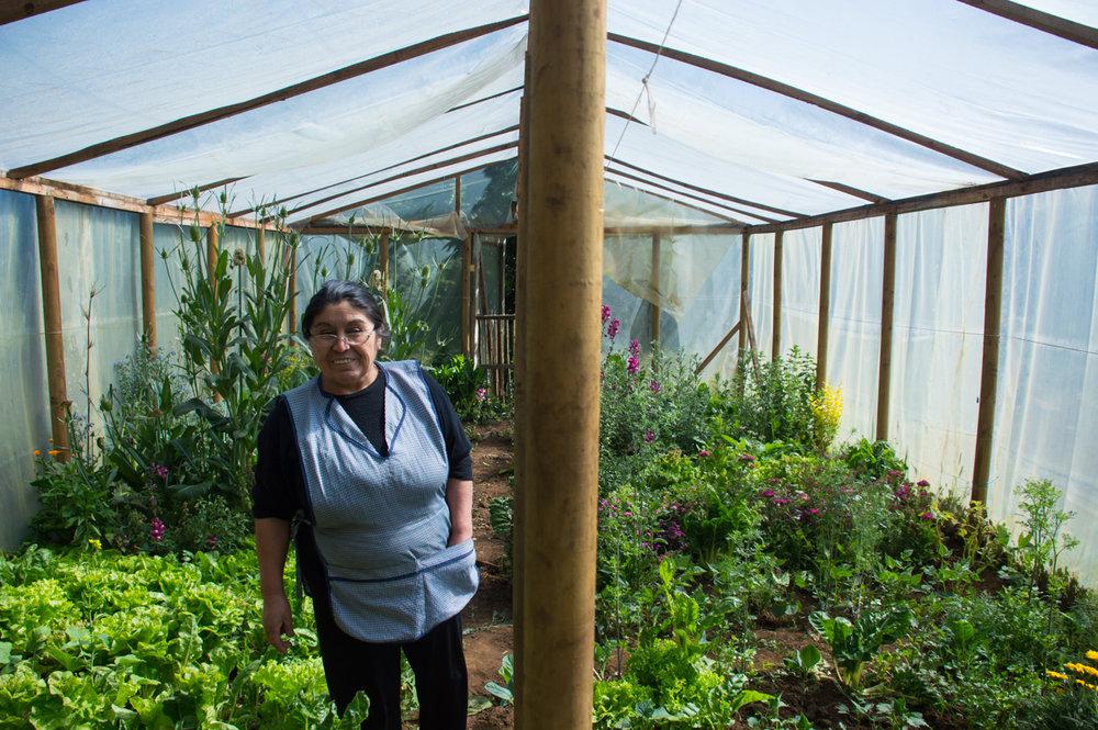 Norma conoce cada planta en su jardín, incluídas las malas yerbas, y sus propiedades medicinales.