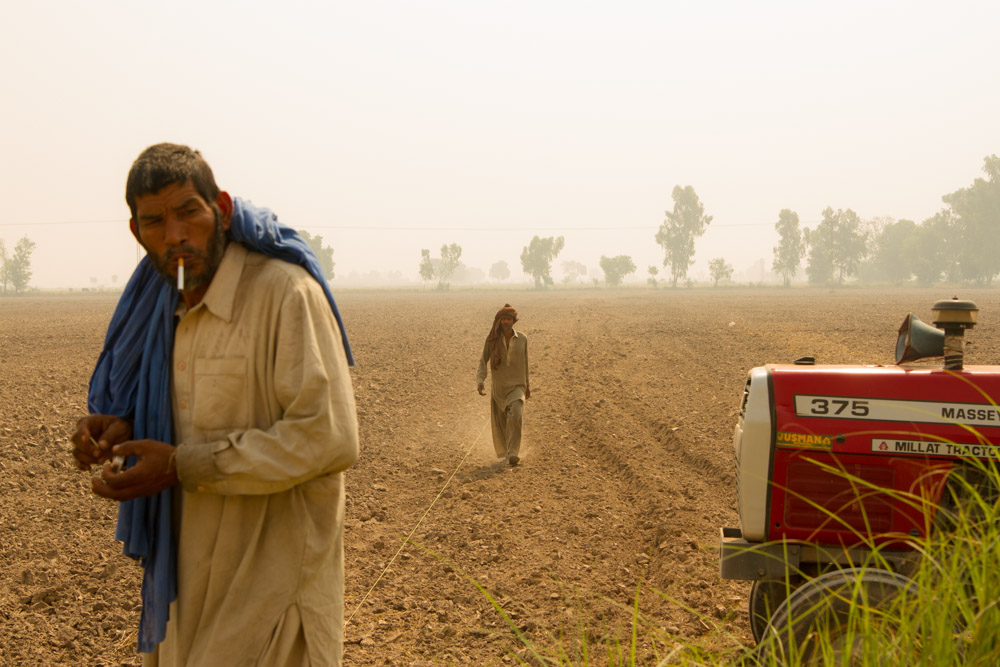 Pakistan: Punjabi Farm