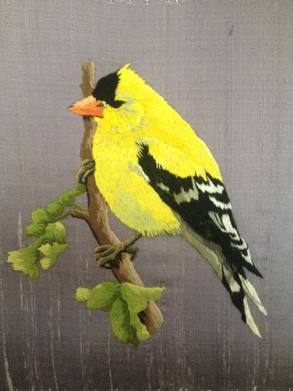denise's goldfinch final.jpg