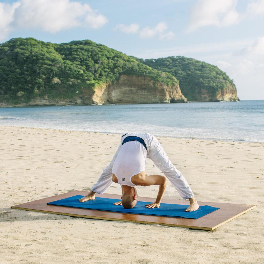 Mukul-Yoga-Prasarita Padotanasana