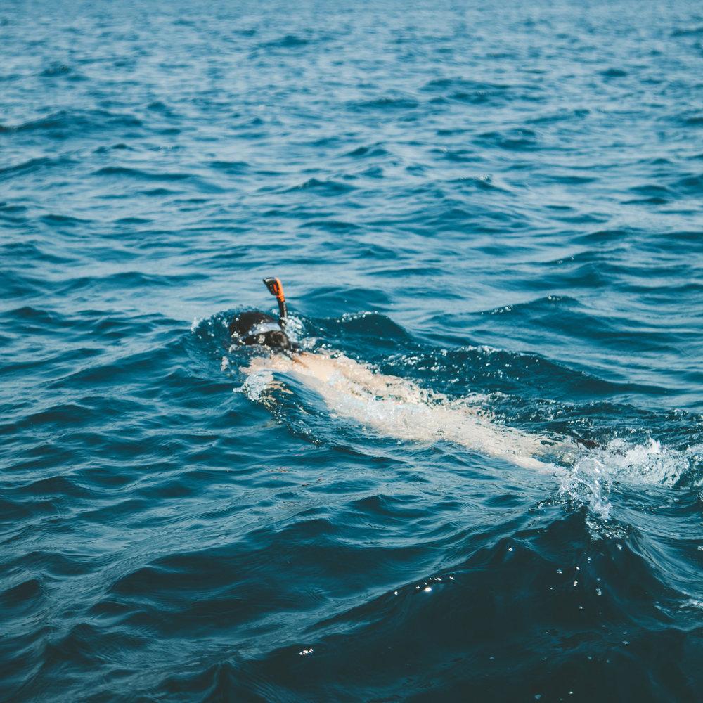 Snorkel Mukul