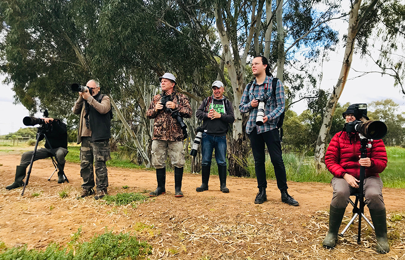 Participants at an Improve your bird photography workshop at White's Rd Wetlands.