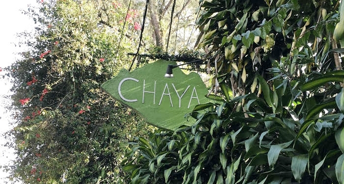 Where to eat in Baguio - Chaya Baguio