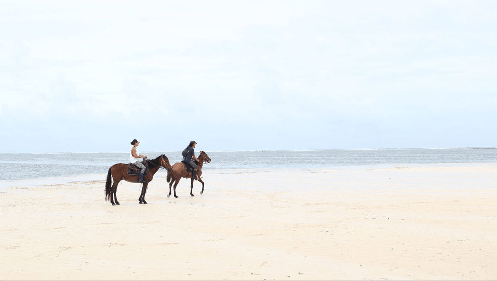 5:30 PM HORSEBACK-RIDING WITH MAGIC RIDES  Photo by @ seekertravels