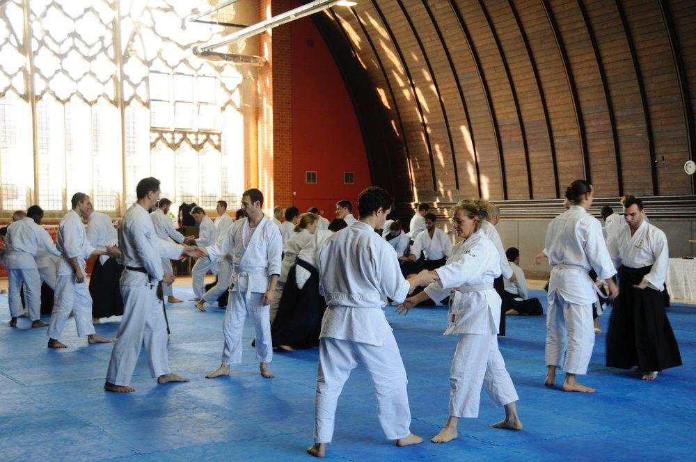 notting-hill-aikido-2015-4.jpg