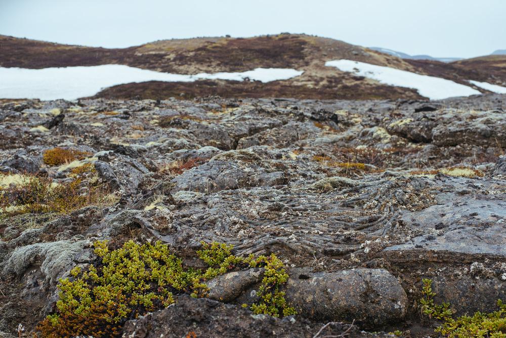 iceland_web-295.jpg