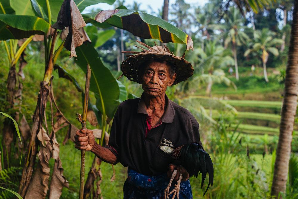 indonesia_2017-297.jpg