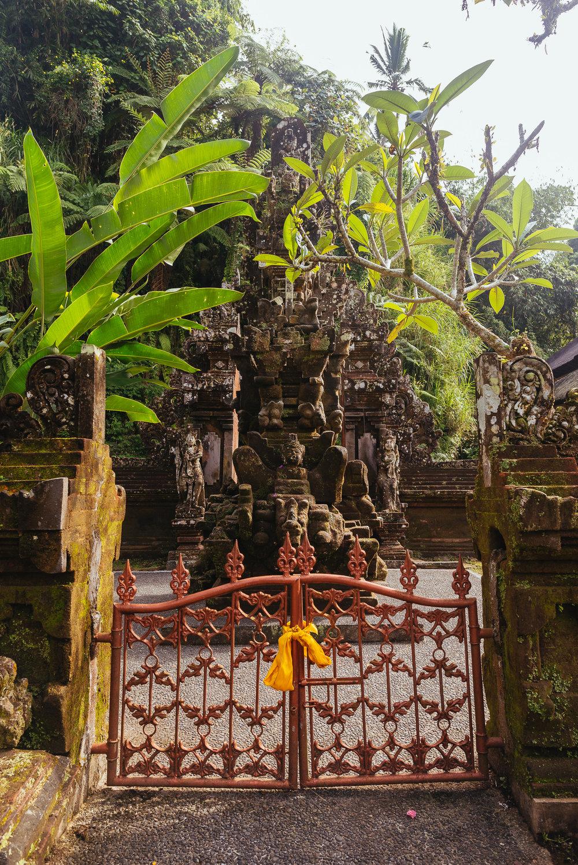 indonesia_2017-341.jpg