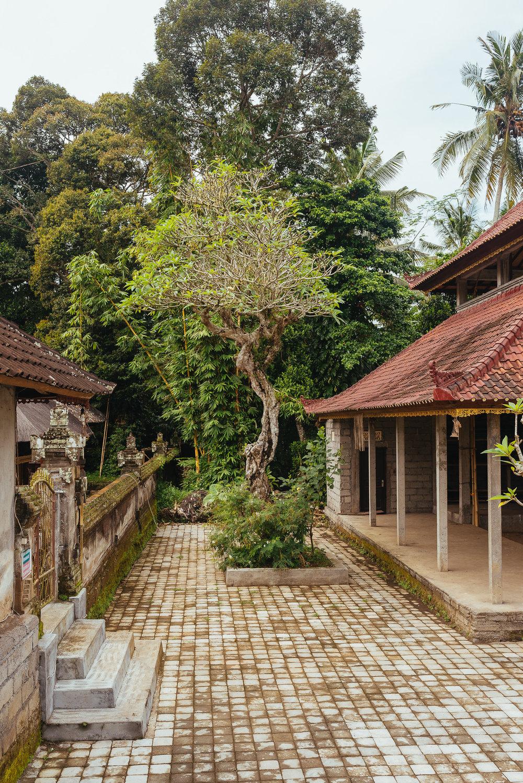 indonesia_2017-380.jpg
