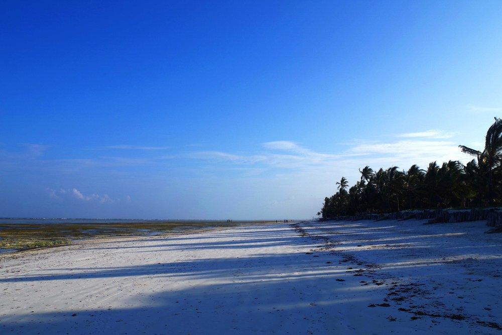 Zanzibar beach__compressed.jpg