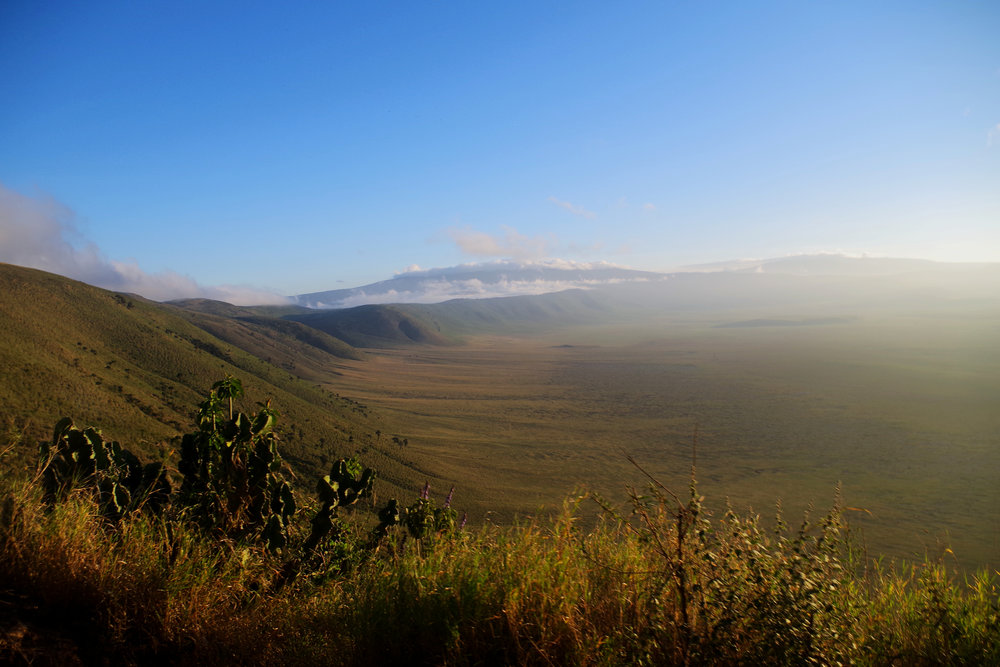 Ngorongoro rim.jpg