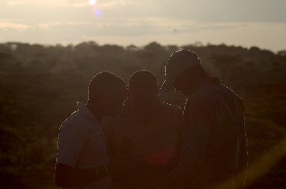 Serengeti latest app.jpg