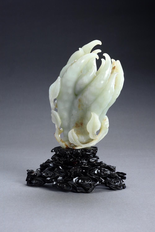 Buddha's hand (citron)