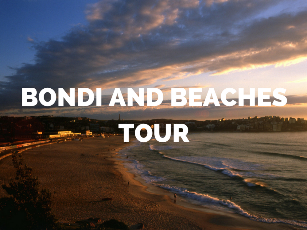 Bondi and Beaches Tour