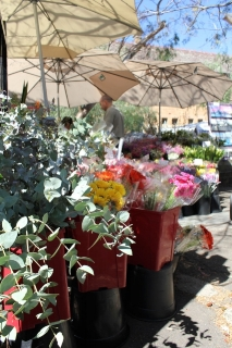 paddington-market-flower-stall-190712832244448blM.jpg
