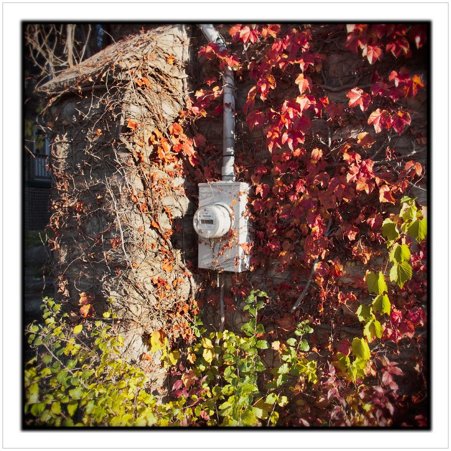 utility meter ~ Alexandria Bay, NY • (click to embiggen)