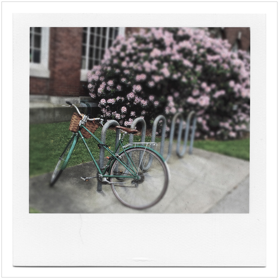 bike with lilacs ~ Brown University / Providence, RI (embiggenable)
