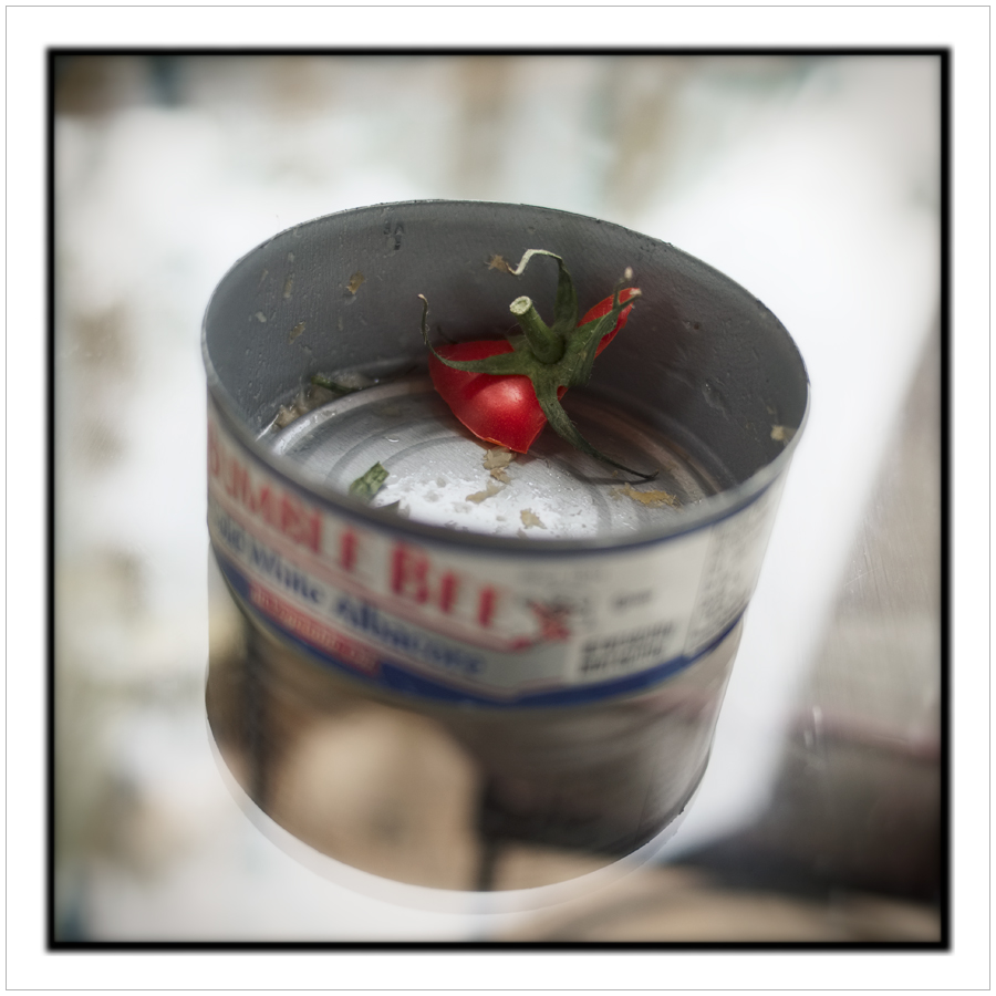 tuna can + tomato top ~ Au Sable Forks, NY in the Adirondack PARK (embiggenable)