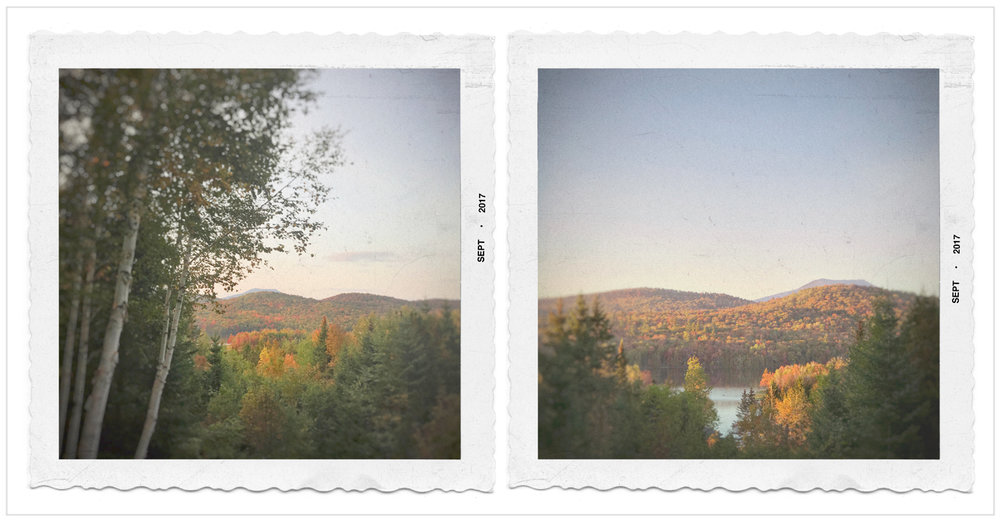 fall color from Rist camp porch   ~ in the Adirondack PARK (embiggenable) • iPhone