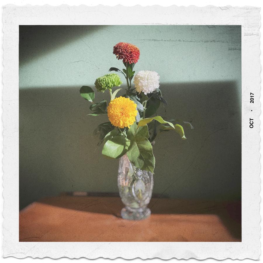 flowers in vase   ~ East Village, NYC (embiggenable) iPhone