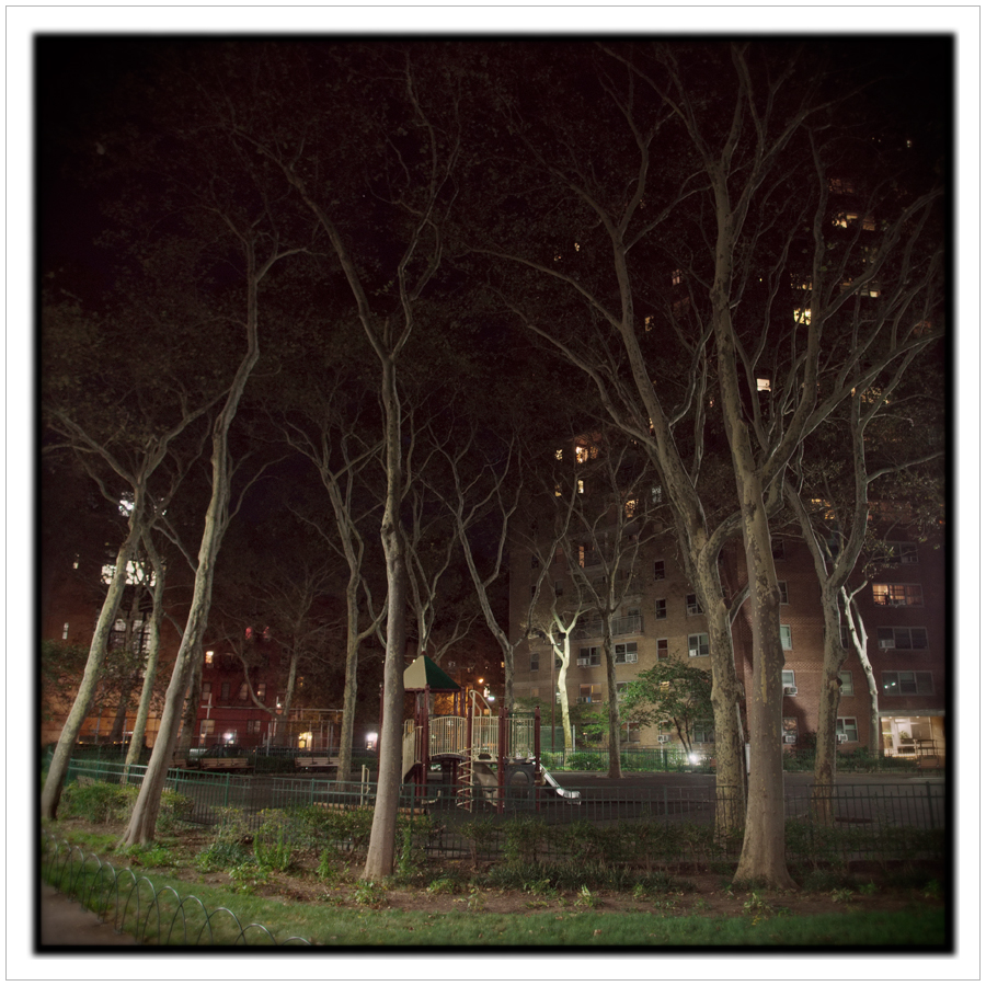 pocket park   /   trees   ~ NYC, NY (embiggenable) • µ4/3