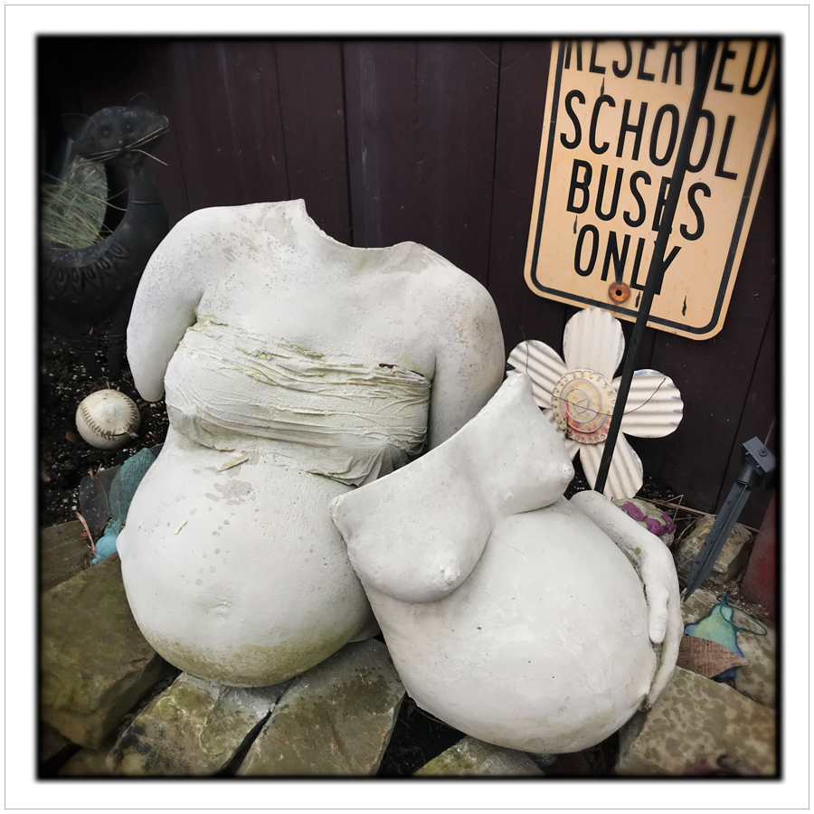 torsos   ~ RANDYLAND garden / Pittsburgh, PA (embiggenable) • iPhone