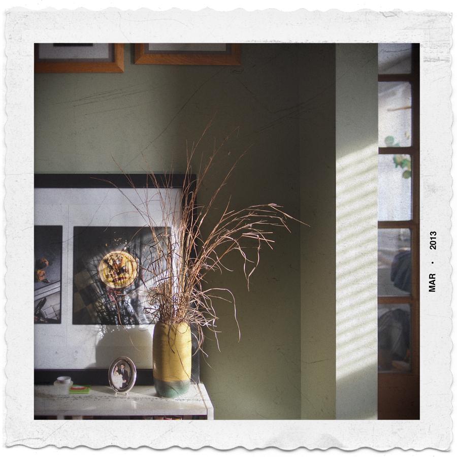 housetnssqbedrmplant.jpg