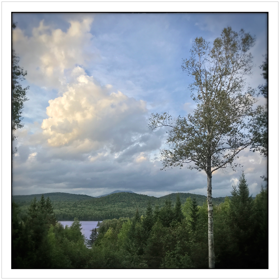 early evening /from the porch ~ Rist Camp/Adirondack PARK (embiggenable) • iPhone