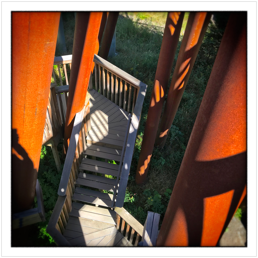 stairs and pilings   /   Wild Walk   ~ Wild Center / Tupper Lake, NY (embiggenable) • iPhone
