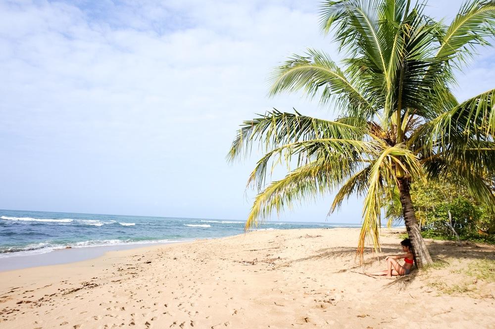 SeeSooMuch Costa Rica