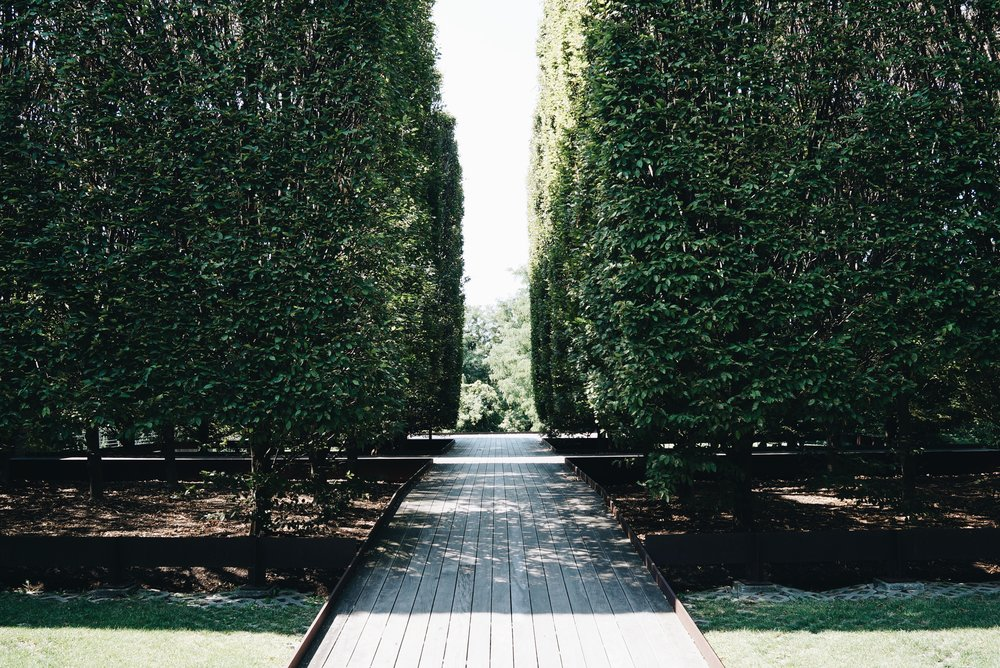 Robert Irwin's landscaping, vestibule and forecourt
