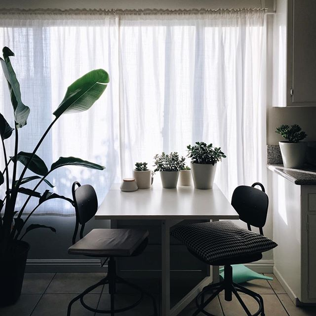 This breakfast nook is where the quietest and most grounding mornings begin, mismatched seat cushions, overturned watering can, ever growing palm and all 🌿 #momentsofmine #mindfulnotes #casasawtelle