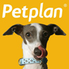 Pet Plan Pet Insurance, Pinterest, Social Media Delivered, social media
