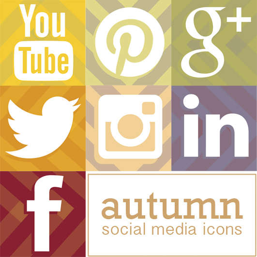 facebook twitter google+ icon set