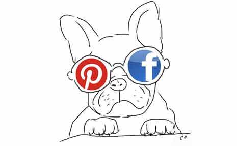 social media visuals
