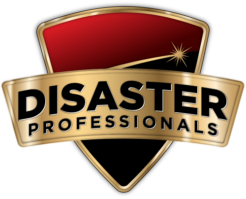 disaster-professionals-logo.png